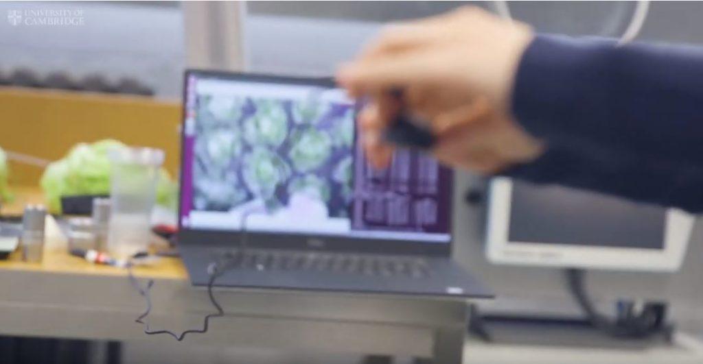 Комьютерная визуализация робота сборщика капусты